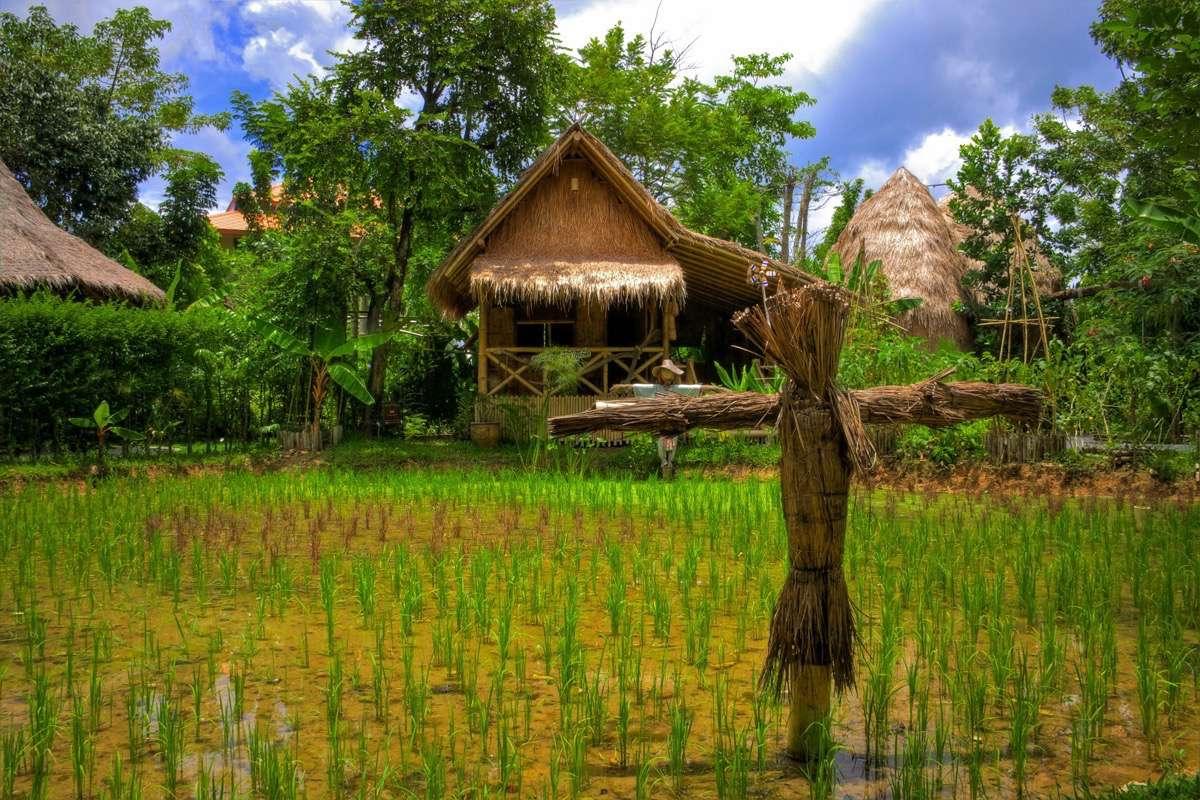 03-tailandia