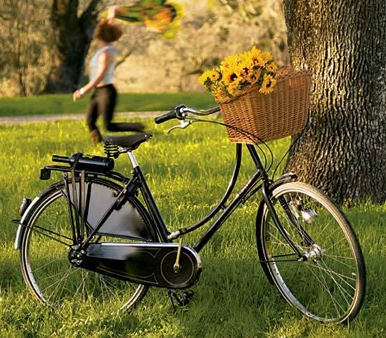 Turismo con bicicletas en Holanda