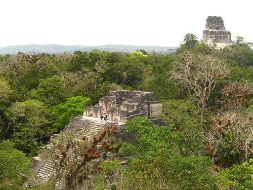 Parque Nacional Tikal en Guatemala