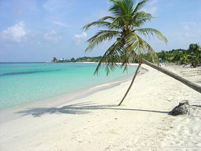 Utila isla encantadora en el Mar Caribe
