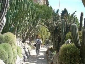 jardin-monaco