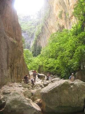 el_bosque-parque_natural__sierra_de_grazalema09