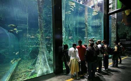 acuario-explora