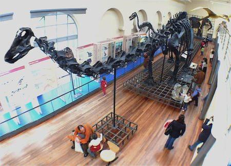 museo_nacional_de_ciencias_na