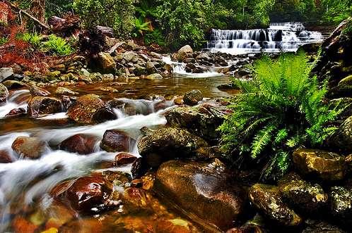 isla-tasmania