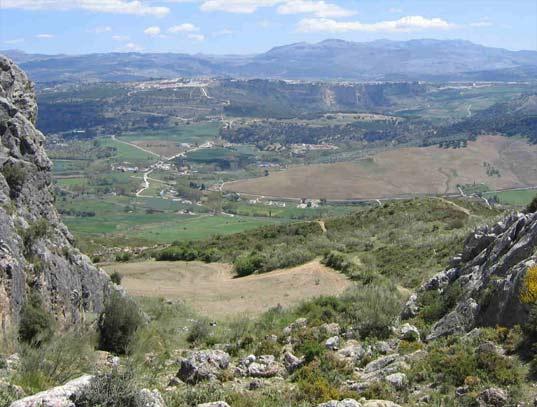 La Ciudad de Ronda en Andalucía 2