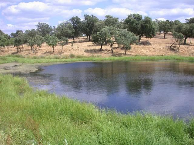 Parque natural Sierras de Cardeña y Montoro en Córdoba 1