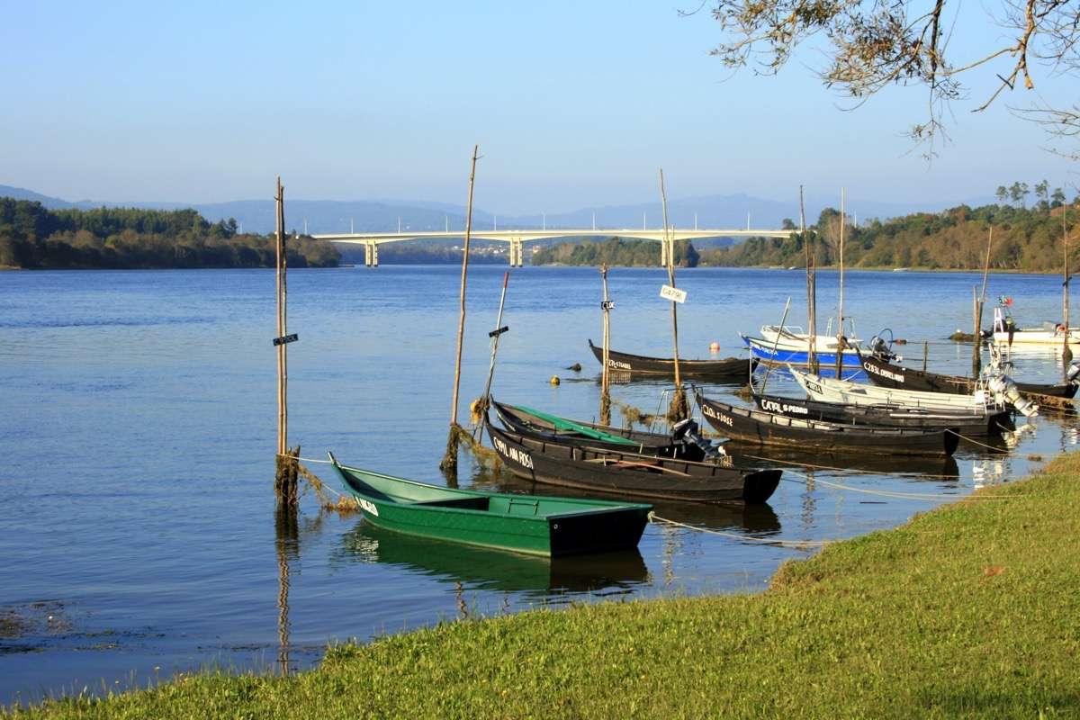 desembocadura del río Miño