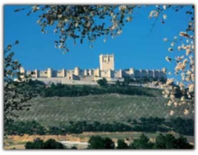 Valladolid, descubre sus castillos 1