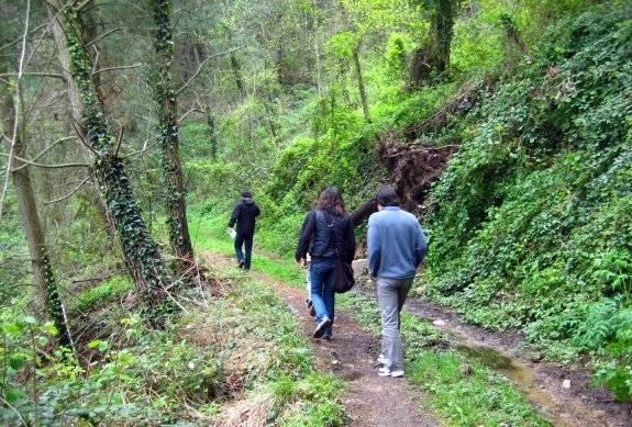 Valle de Arbúcies, un rincón donde perderse 2