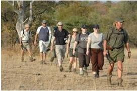 Safari fotográfico en Sudáfrica 2