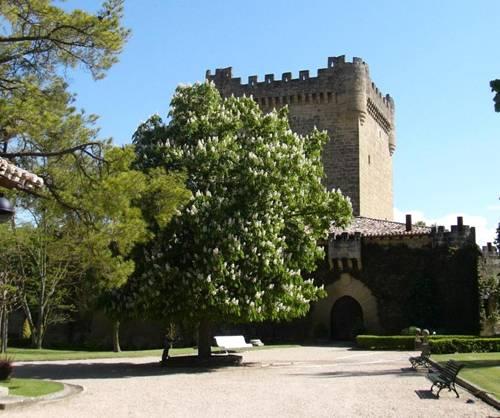 Rutas del vino de La Rioja 2