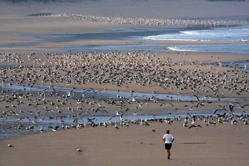 3 playas IMPRESIONANTES en las Rías Altas 5