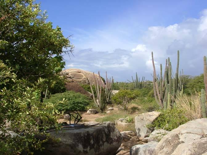 Parque Nacional Arikok 1