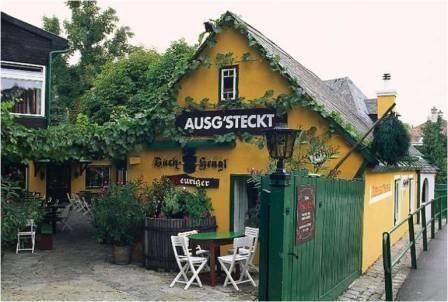 Los famosos Heuriger de Austria 1