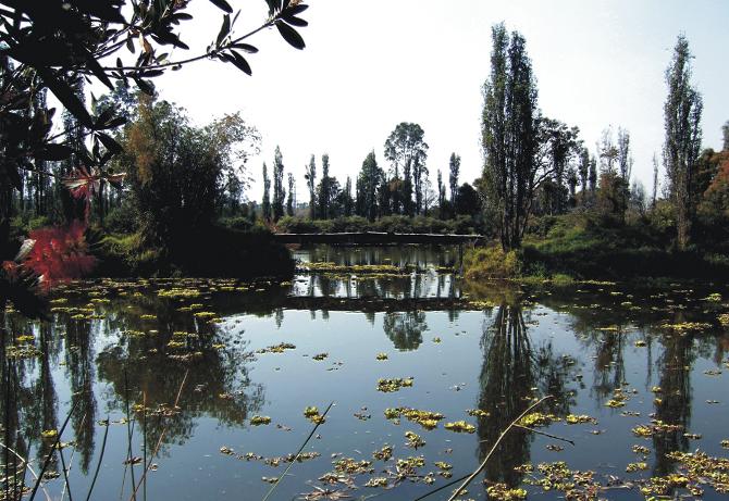 El Parque Tezozómoc 1