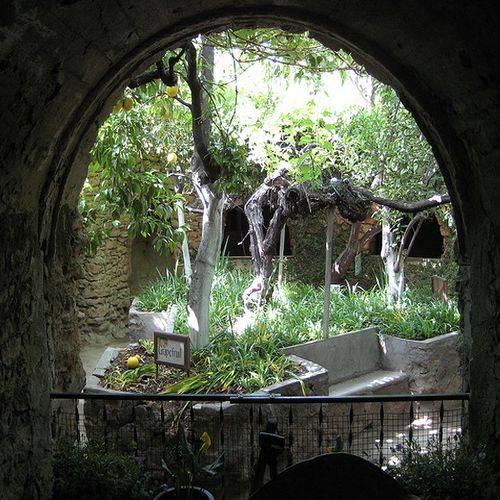 Los Jardines de Forestiere, un paseo subterráneo en California