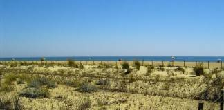 playa espigon huelva