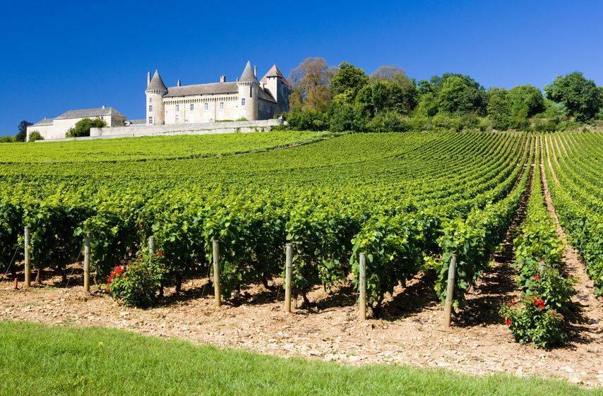 Descubriendo el vino y la cultura de Burdeos