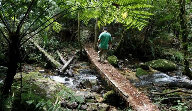 El Parque Nacional Cusuco 1