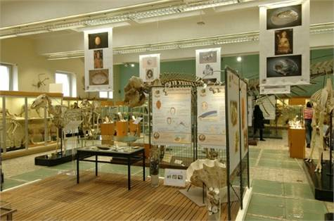 acuario-museo de Lieja
