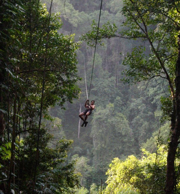 10. Bokeo Reserve, Laos - Gibbon
