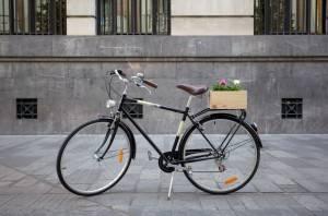 bici cordoba