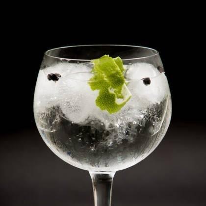 Los mejores Gin Tonics de Madrid 2
