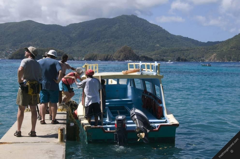 Tobago ecotourism 1