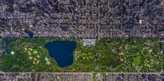 Central Park en Nueva York. Foto de Sergey Semenov