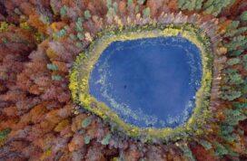 21 fotografías aéreas que te dejarán sin respiración 4