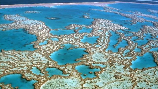 destinos soñados por los españoles - australia coral