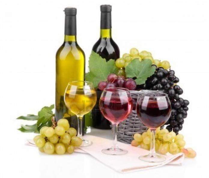 Turismo en La Rioja, tierra de vinos 2