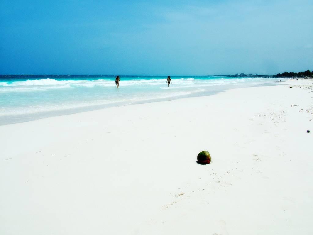Isla Vanautu, una de las islas paradisíacas de nuestro planeta