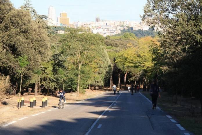 parques para correr en madrid: casa de campo