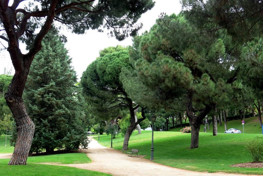 parques para correr en madrid: oeste