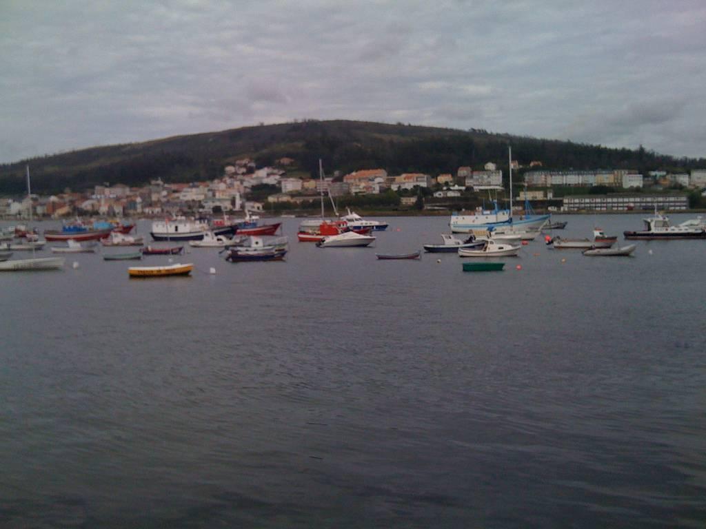 percebes en galicia: corcubion
