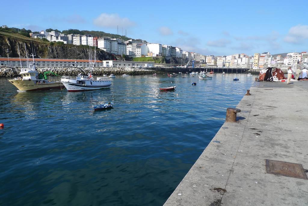 percebes en galicia: malpica
