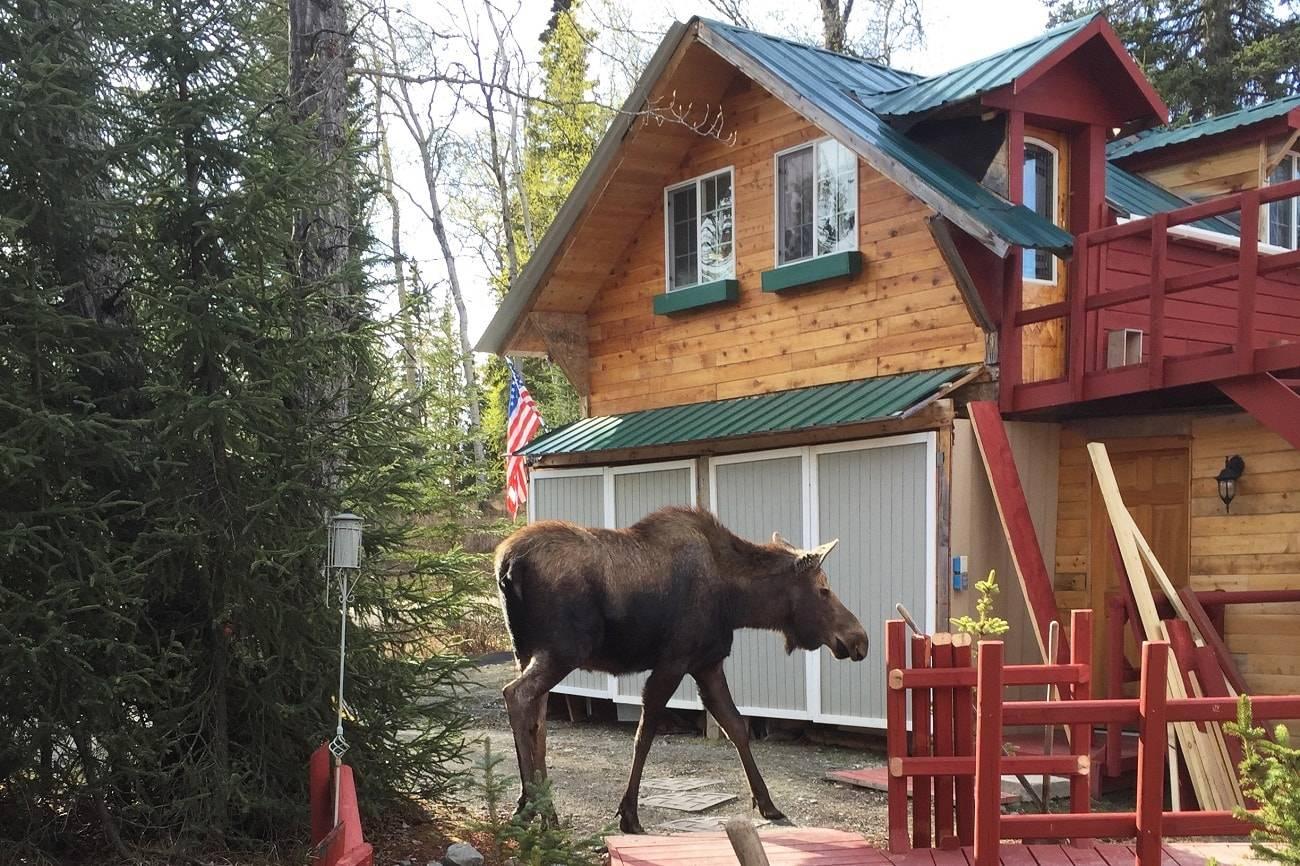 7 alojamientos ecológicos para disfrutar de la naturaleza 5
