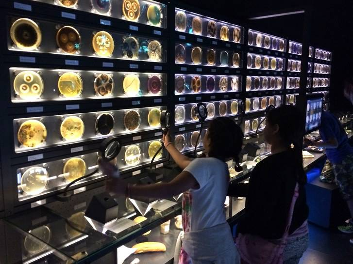 8 museos divertidos para visitar con niños 7