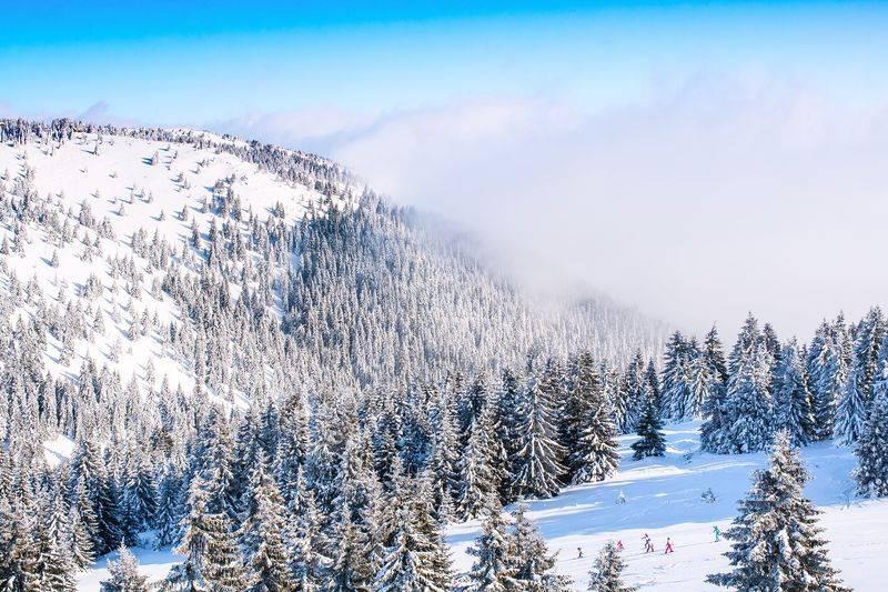 Disfruta del mundo del esquí sin tener que pagar demasiado 3