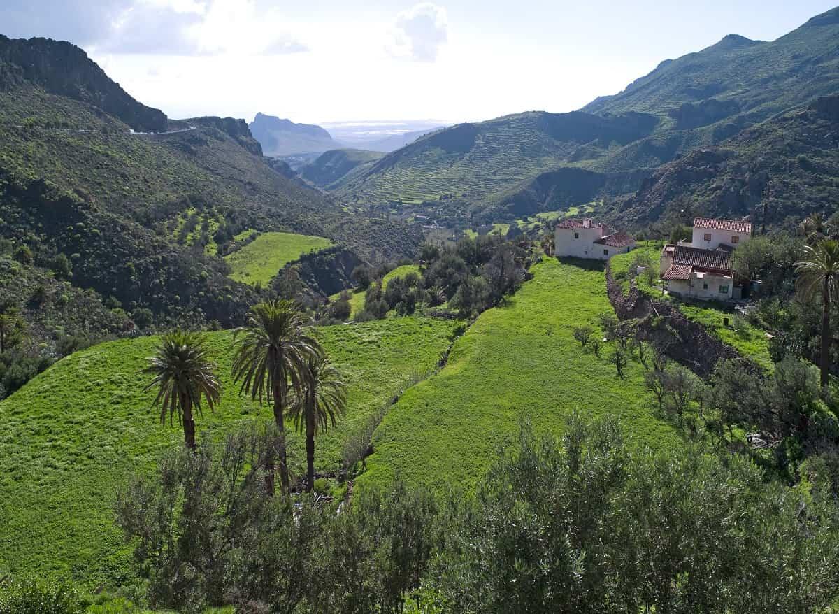 Gran Canaria, uno de los primeros destinos en recuperarse tras el Coronavirus 1