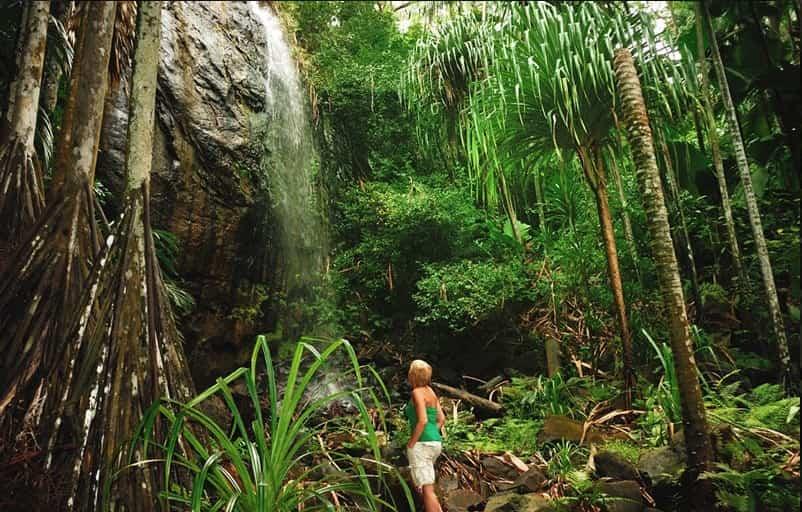 Seychelles: un oasis de playas vírgenes y naturaleza intacta 1