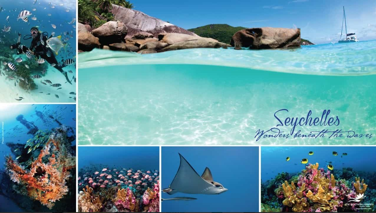 Seychelles: un oasis de playas vírgenes y naturaleza intacta